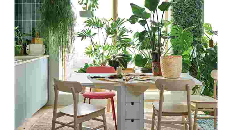 Ikea Business Insider France