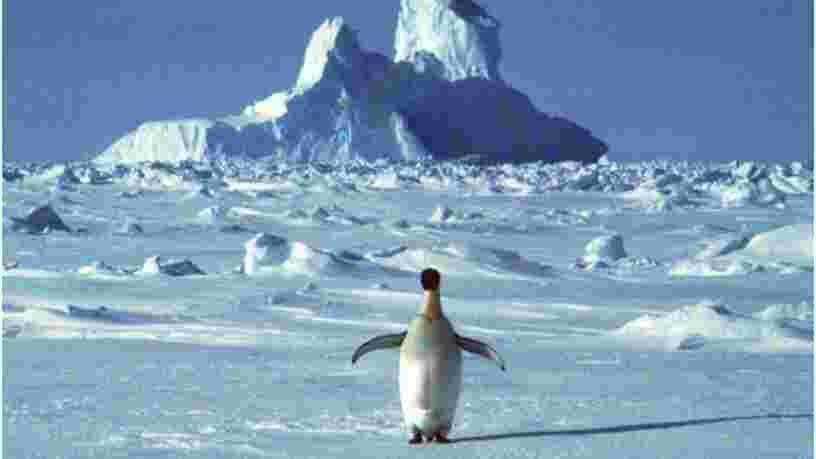 Du méthane s'échappe des fonds marins de l'Antarctique, ce qui est inquiétant pour le climat