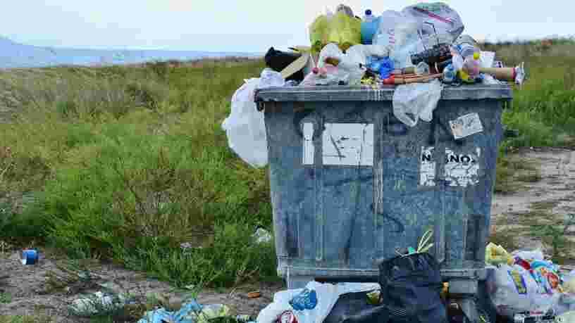 Ces 8 applis vous aident à ne pas vous laisser submerger par vos déchets