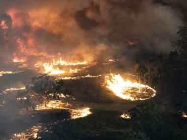 L'Australie ravagée par les flammes