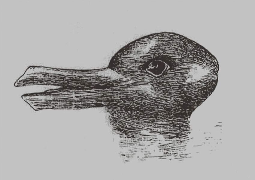 Un lapin ou un canard ?
