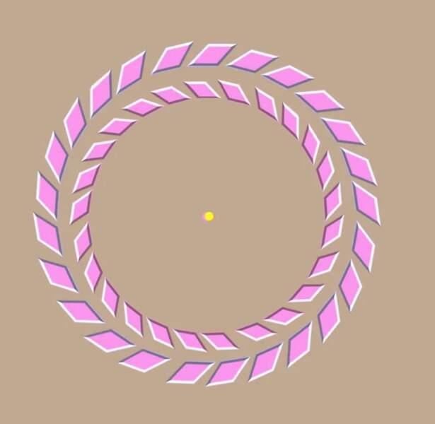 Une dernière pour la route. Fixez le point jaune. Ensuite, rapprochez votre tête de l'écran et les anneaux roses tourneront comme pr magie !