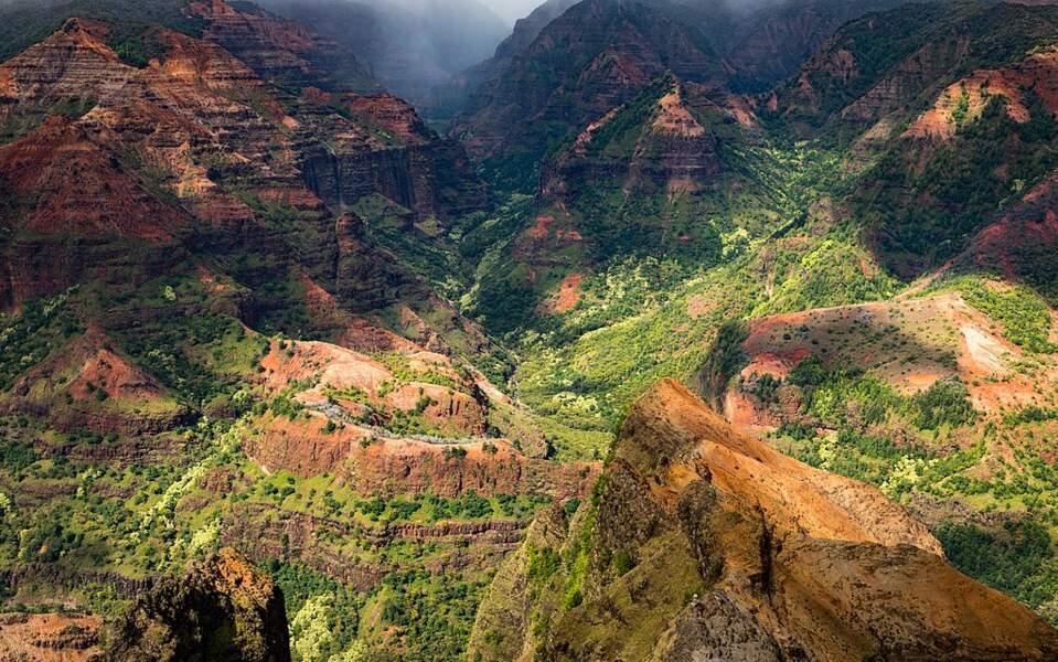 Le canyon Waimea