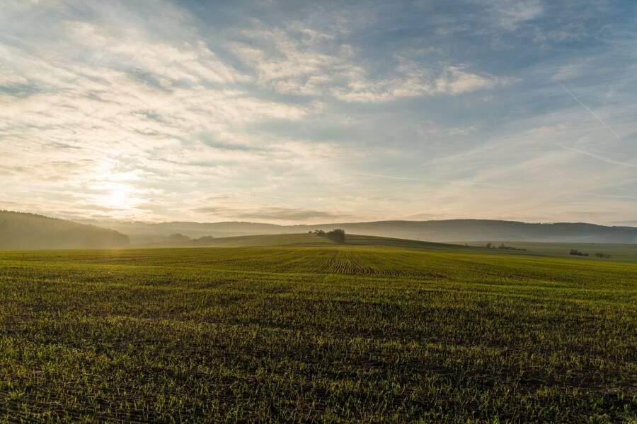 7/ Partout en France : sauver des terres agricoles