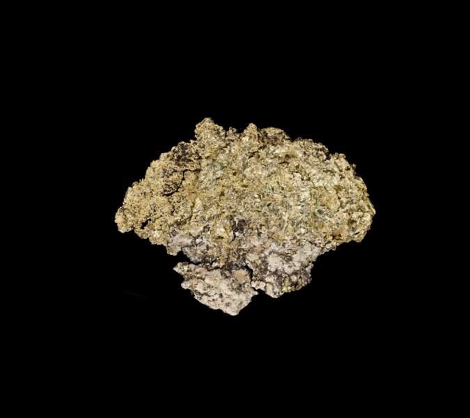 Dernier trésor de la Ruée vers l'or