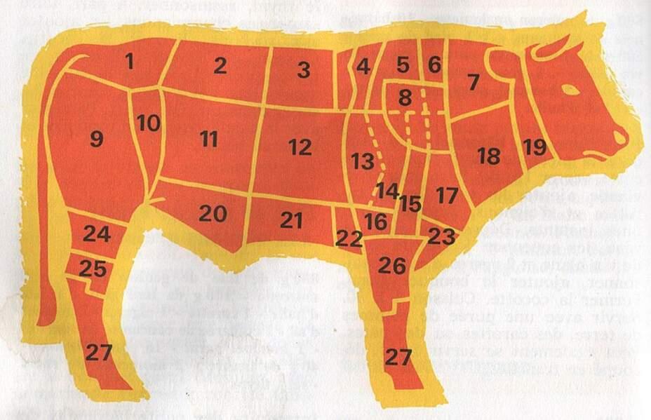 Il faut 15 000 litres d'eau pour produire un kilo de bœuf