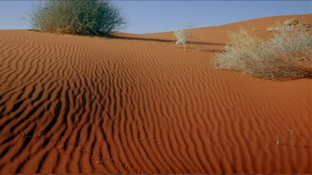 Grand Désert de sable- 400 000 km²