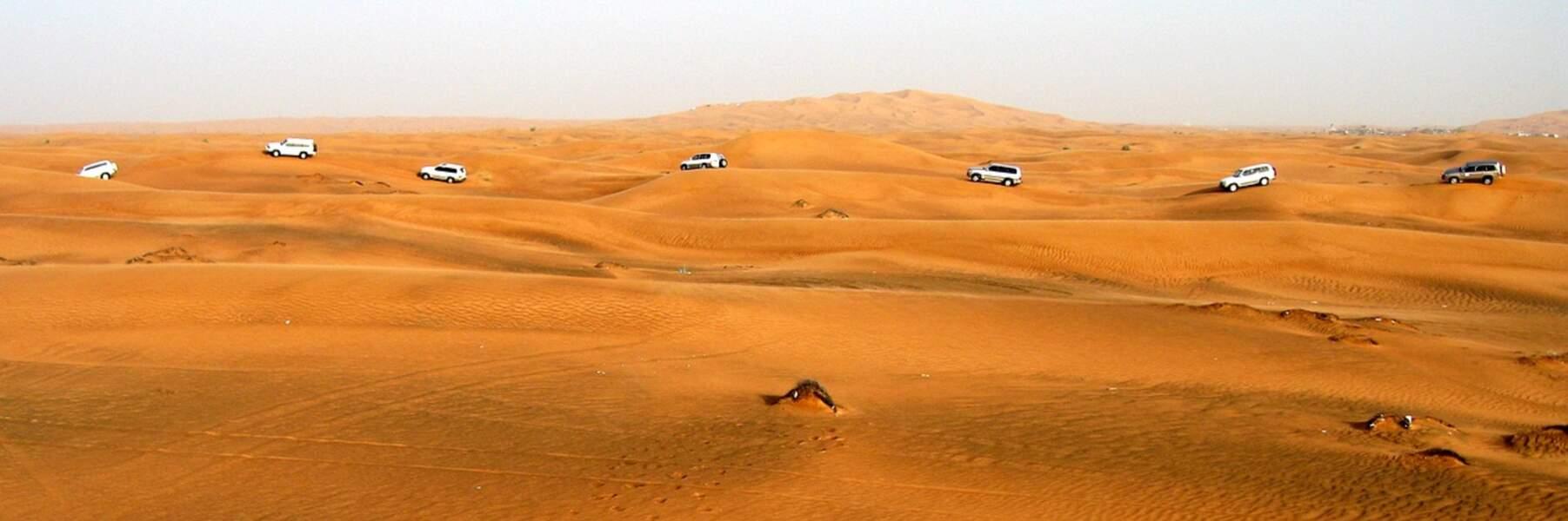 Désert d'Arabie- 2 331 000 km²