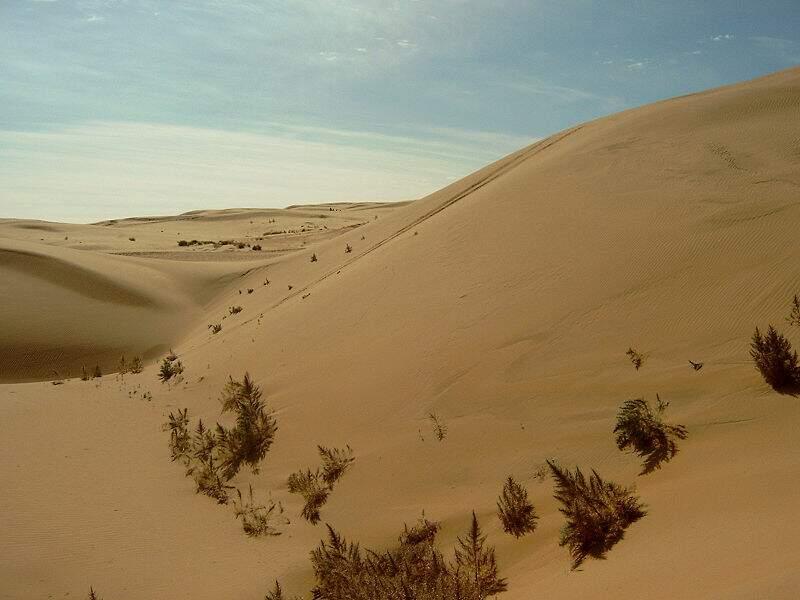 Désert de Gobi- 1 330 000 km²
