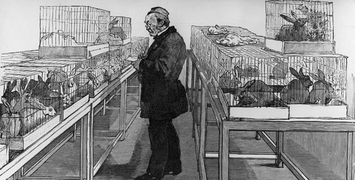 1885: Pasteur découvre le vaccin contre la rage