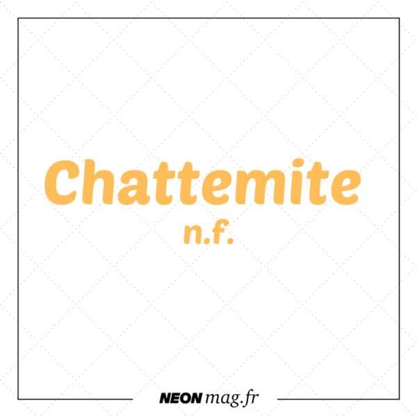 Chattemite n. f.