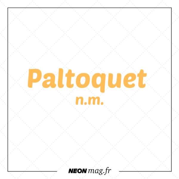 Paltoquet n. m.