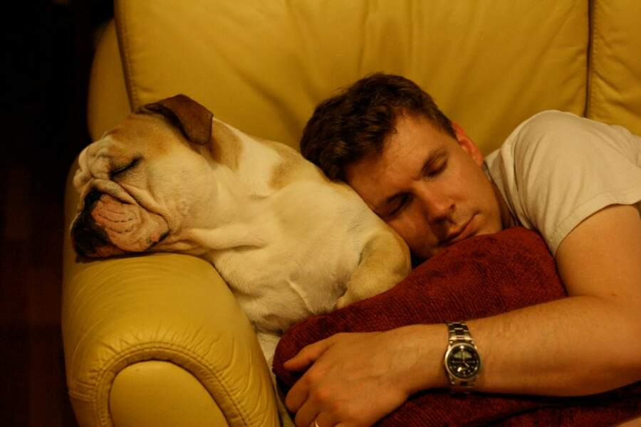 27 % dorment avec un animal