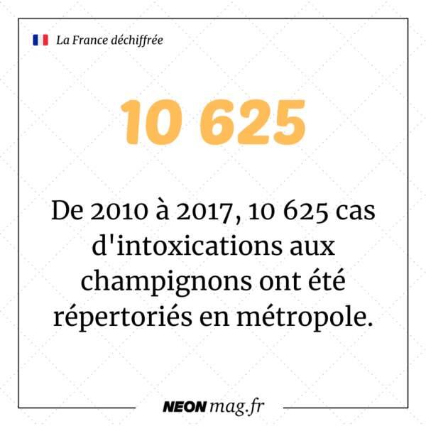 De 2010 à 2017, 10 625 cas d'intoxications aux champignons ont été répertoriés par les centres antipoison en métropole