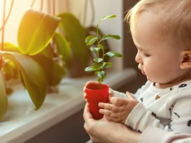 8 activités vertes à faire à l'intérieur
