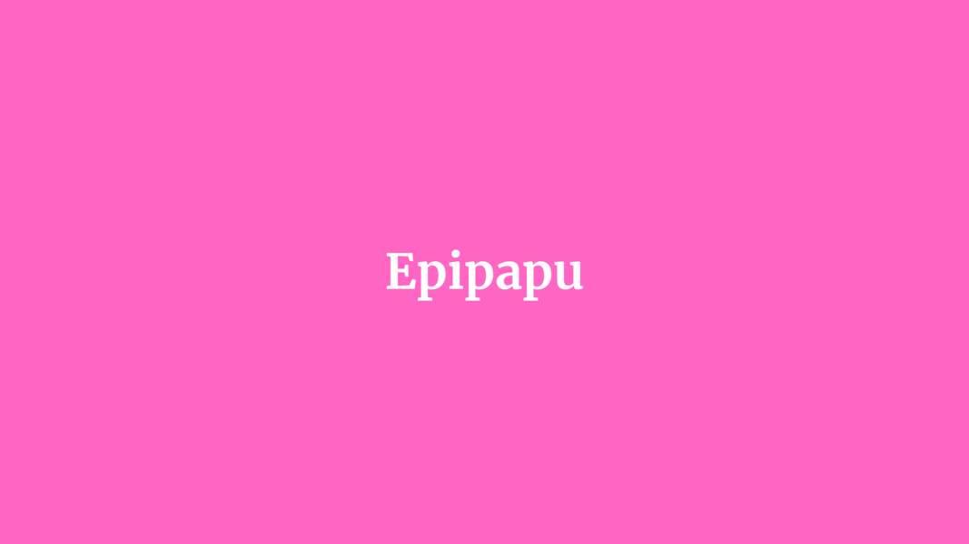 Epipapu