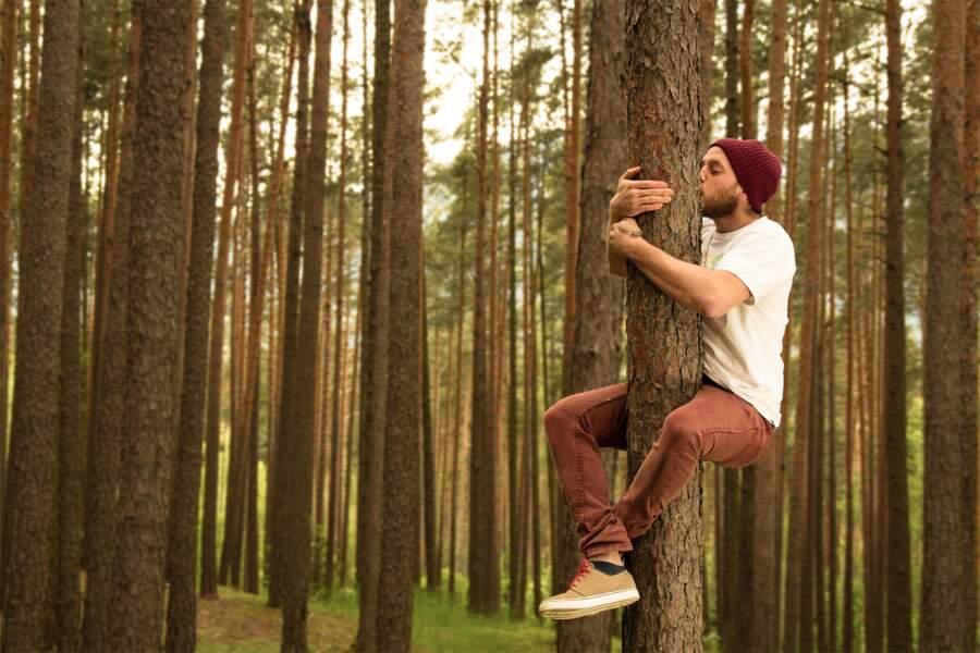 Faire des câlins aux arbres