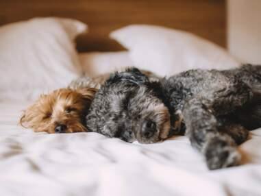 25 astuces pour mieux dormir