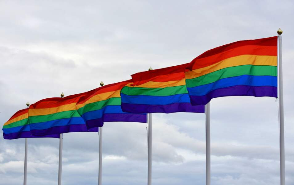 Le plan contre la haine anti LGBT