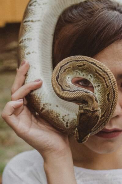 Le monde est gouverné par des reptiles extraterrestres