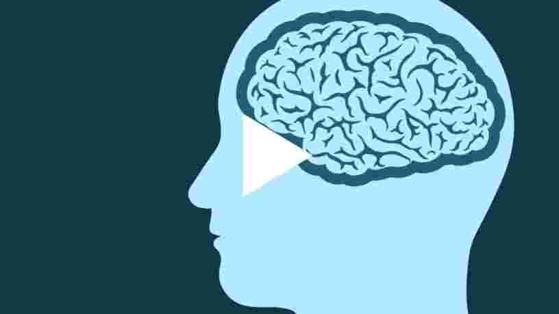 Un neurologue nous dévoile le plus gros mythe qui existe sur le cerveau humain