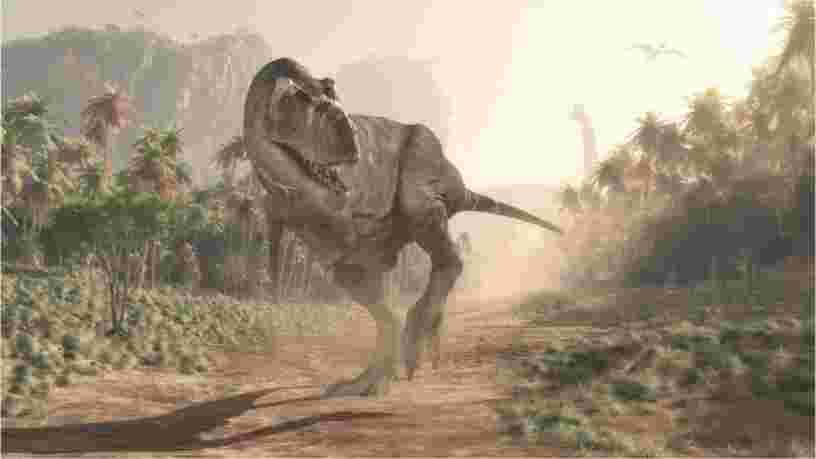 Voici à quoi ressemblait vraiment un T. Rex, et il est très différent du monstre de 'Jurassic Park'