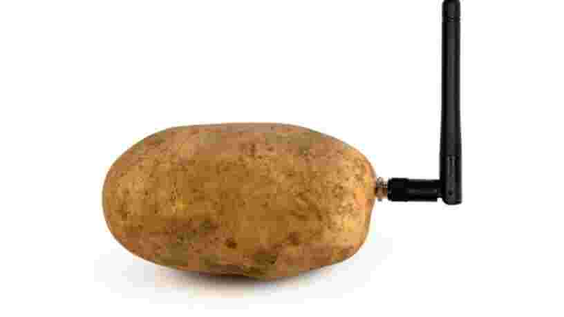 Un Français ridiculise le CES avec une pomme de terre connectée mais continue d'affirmer que son produit est très sérieux