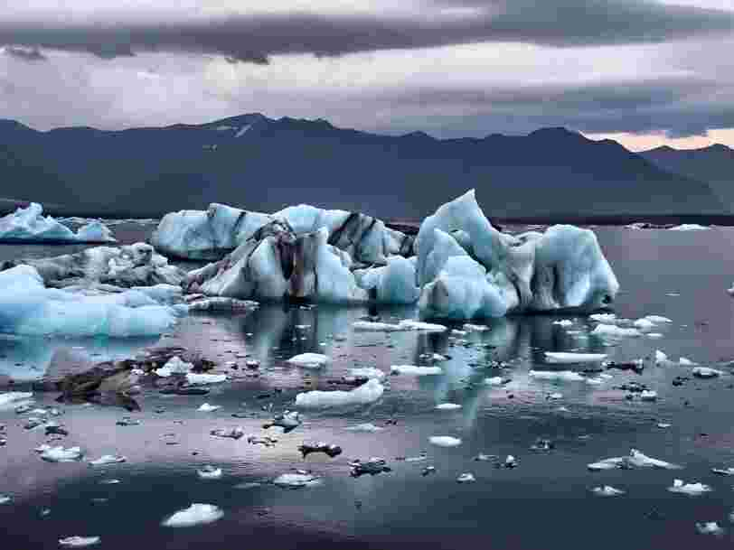 The UN has warned that we only have 12 years to curb climate change