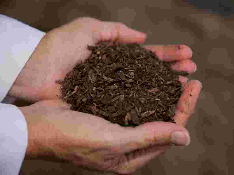 Composting human bodies to turn them into soil will soon be legal in one US state — part of a growing green death trend