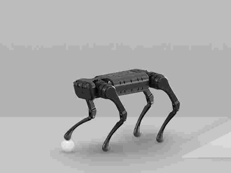 There's a new competitor in the world of eerily lifelike four-legged robots - take a closer look at Unitree's robot dogs