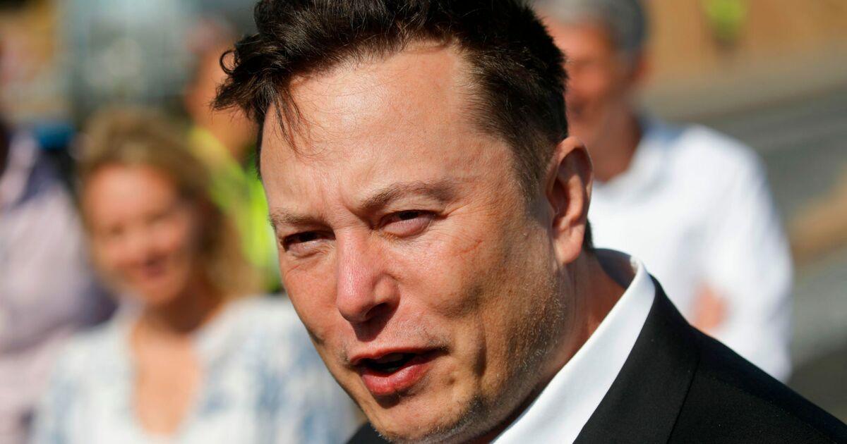 Pour Elon Musk, il est 'moins stupide' d'investir dans le bitcoin que de détenir du cash - Business Insider