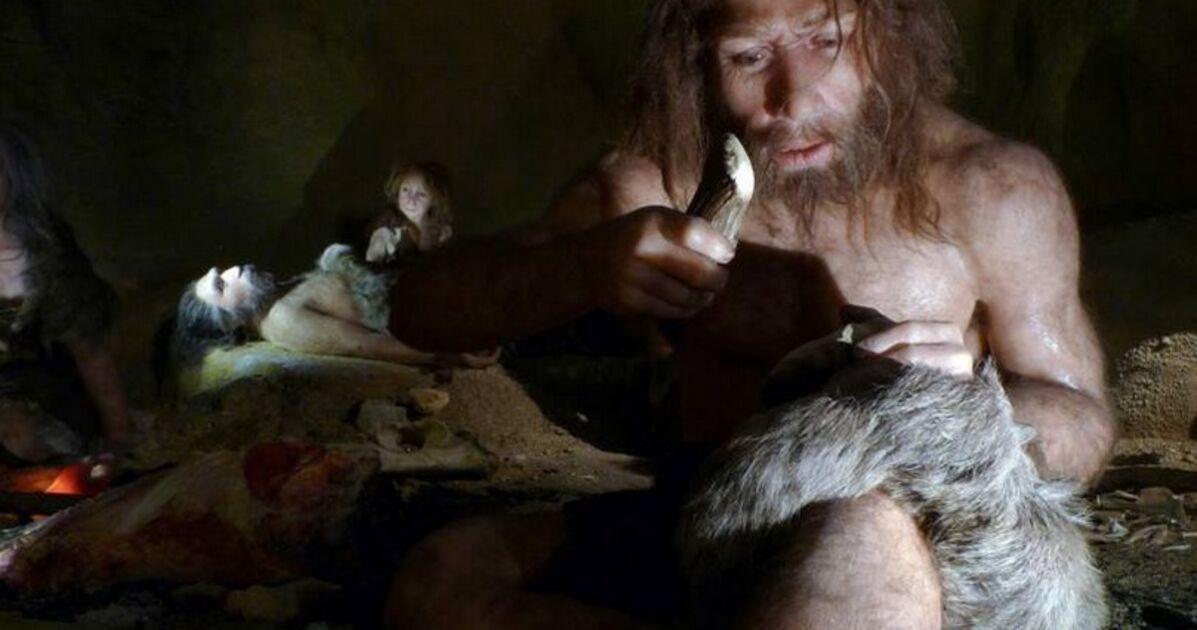 Les Néandertaliens auraient disparu après une inversion des pôles, selon une nouvelle étude - Business Insider