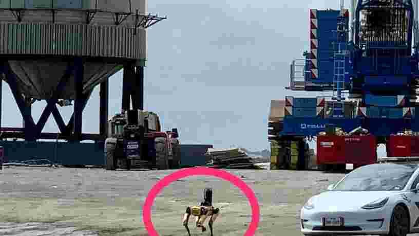 SpaceX : un chien robot a inspecté l'épave du prototype de fusée Starship