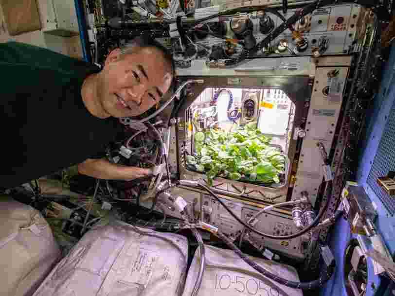 Des bactéries inconnues découvertes à bord de la Station spatiale internationale