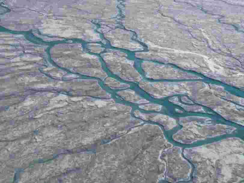 Au Groenland, l'apparition d'une 'dark zone' causée par des algues inquiète les scientifiques