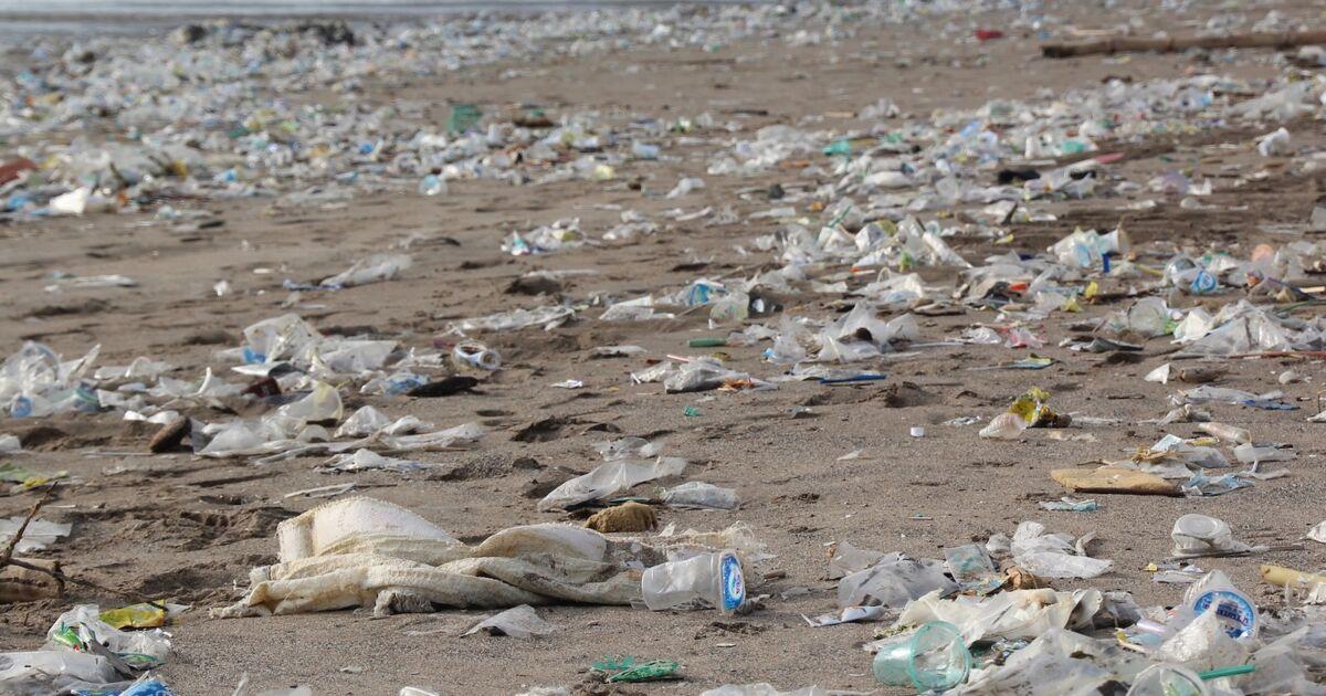 Coca-Cola, Nestlé... Les 10 entreprises qui génèrent le plus de pollution plastique dans le monde