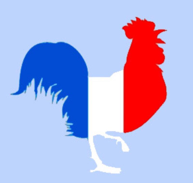 Quel est le taux d'emploi de la population active française ?