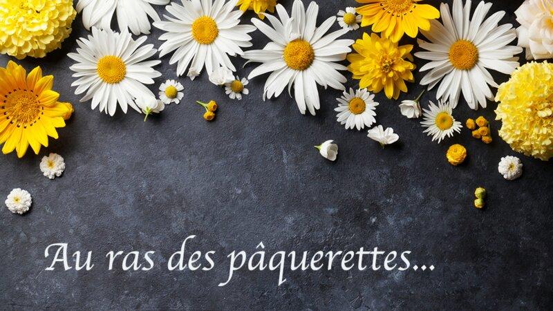 Connaissez-vous les expressions autour des fleurs ?