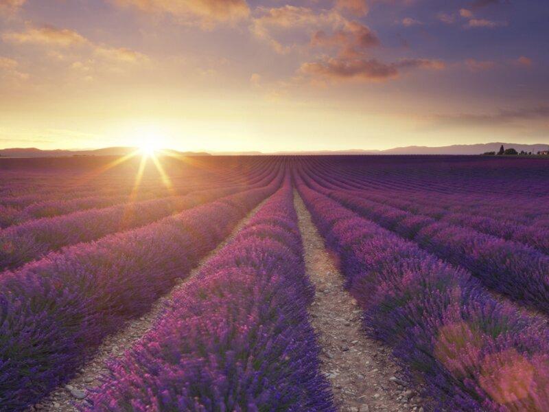 Connaissez-vous bien la Provence ?
