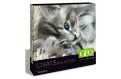 Calendrier perpétuel GEO - Chats et chatons 2012 - 19.99€