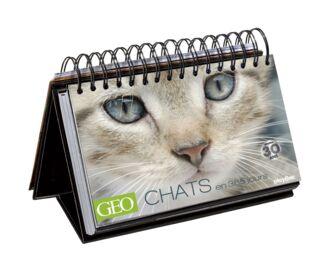 Calendrier perpétuel GEO 365 Chats (2015) - 19.99€