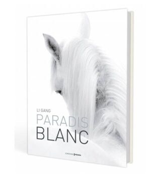 Paradis blanc