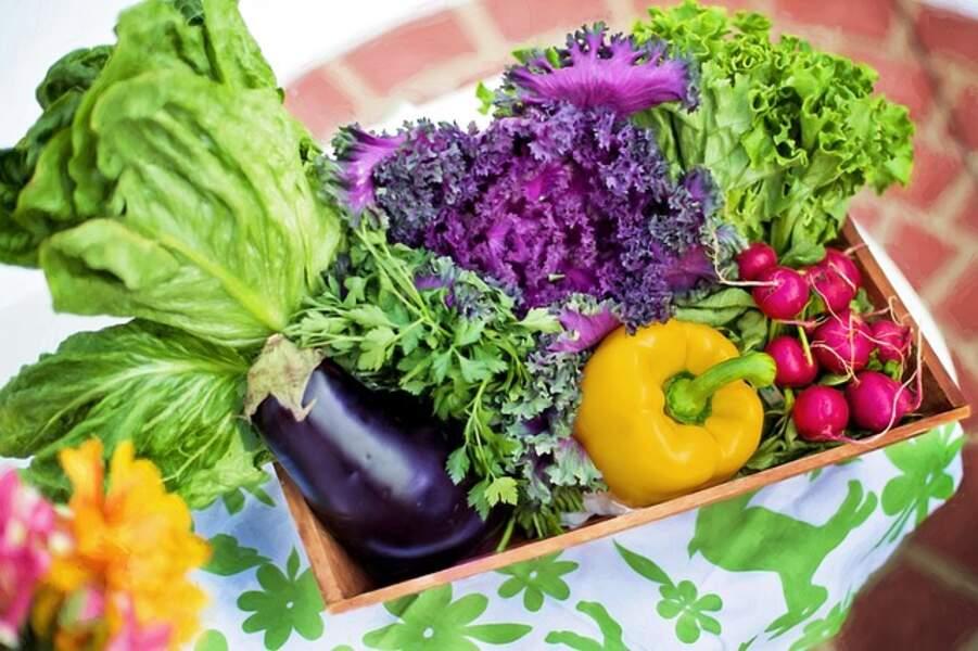 Les légumes n'ont plus de goût