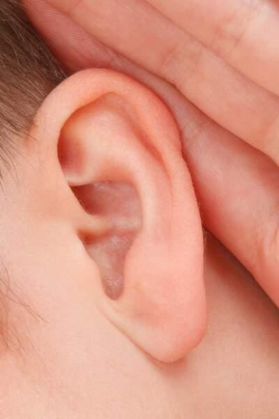 Recoller les oreilles
