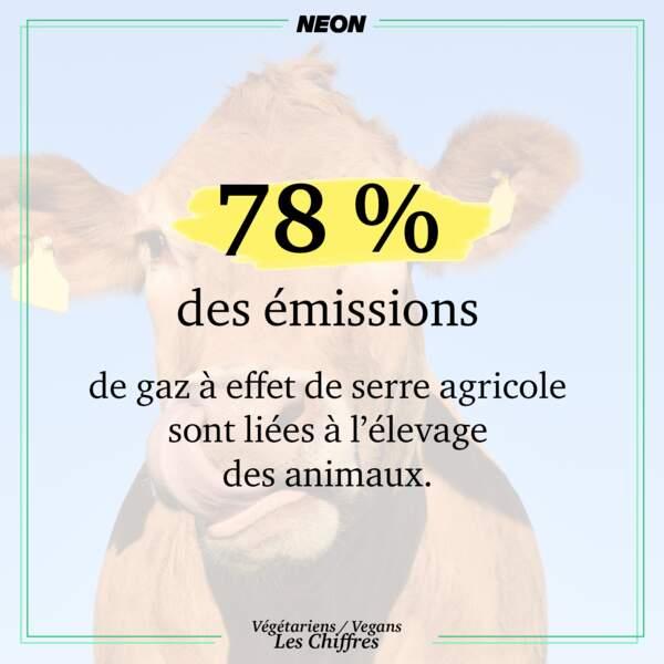 78 % des émissions de gaz à effet de serre agricole sont liées à l'élevage des animaux