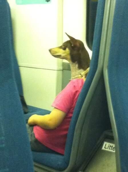 Ceci n'est pas un homme à tête de chien