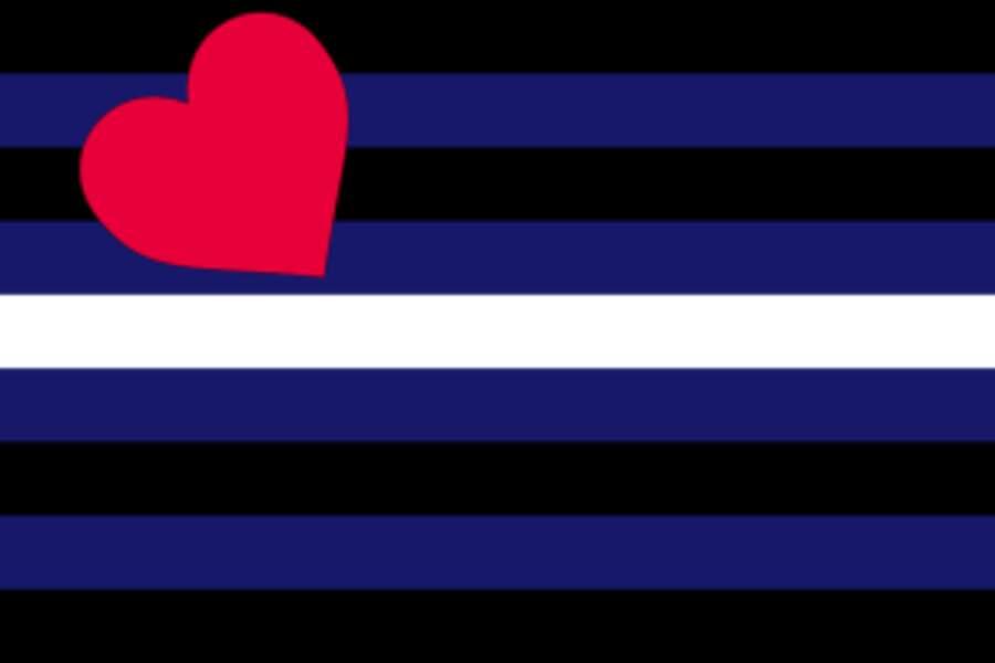 Le drapeau SM