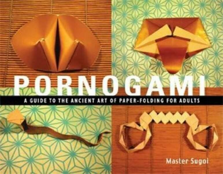 Un livre Pornogami