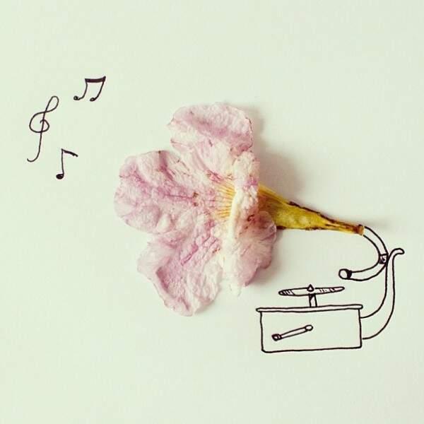 Un joli phonographe
