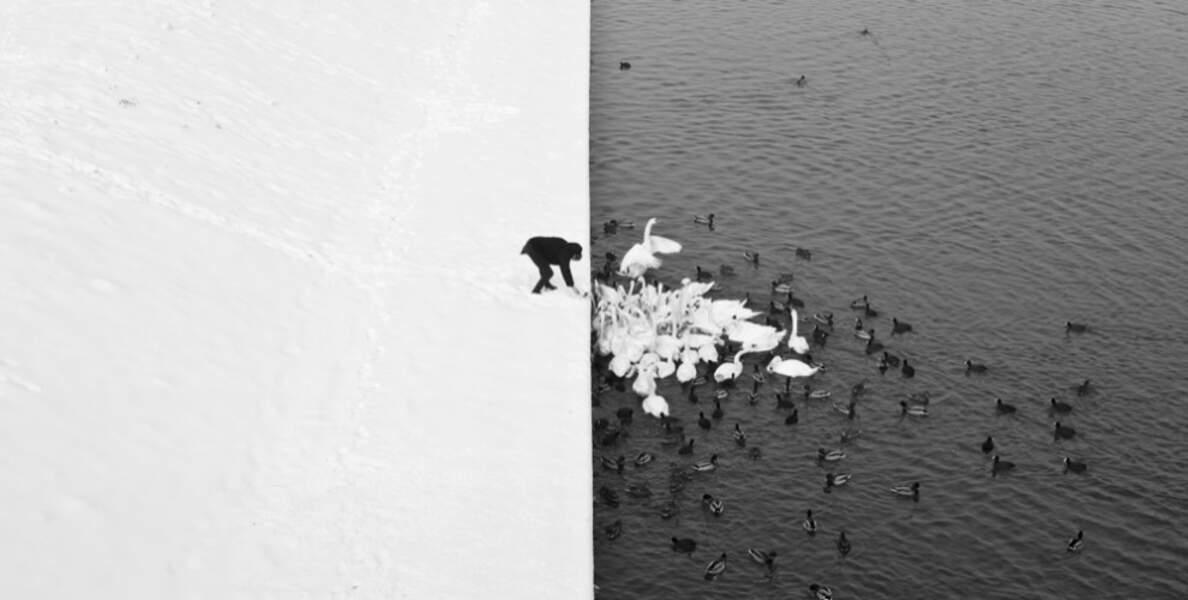 White is white